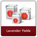 Lavender Fields - Formal English herbal…uplifting.