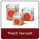 Peach Harvest - A bumper crop of juicy peach fragrance fresh from the field.